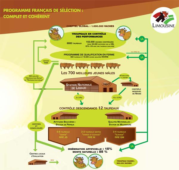 Programme français de sélection